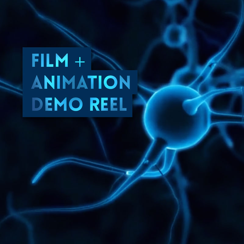 animation and film industry A handy step-by-step guide to the animation production process  envisage the  final film, allowing the opportunity to feed back on the design.